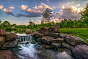 Mark Papke - Waterfall Rock Garden...