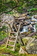 Adrian Evans - Waterfall Way