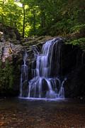 Carolyn Stagger Cokley - waterfall0302