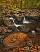 Fall Colors Autumn Colors Posters - Waterfalls and Swirl Poster by Susan Candelario