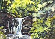 Carol Wisniewski - Waterfalls in Central...