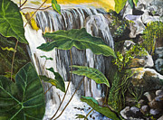Marcia Prints - Waterfalls in Spain by Marcia Lillianthal Print by Sheldon Kralstein