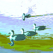 Drake Digital Art - Waterfowl-abstract by Tom Druin