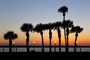 Sunset Scenes. Prints - Waterfront after Dark Print by Debra and Dave Vanderlaan