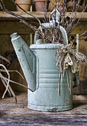 Sheds Posters - Watering Can Pot Poster by Heather Applegate