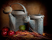 Watering Can Framed Prints - Watering Cans Framed Print by David and Carol Kelly
