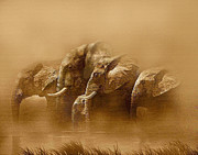 Elephants Digital Art - Watering Hole by Robert Foster