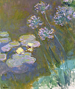 Claude Monet - Waterlilies and Agapanthus
