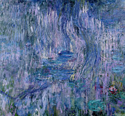 Weeping Willow Posters - Waterlilies and Reflections of a Willow Tree Poster by Claude Monet