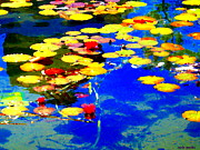 Lake Relections Prints - Waterlilies Pond Beautiful Nympheas Hommage De Monet Jardin A Giverny Water Scapes Carole Spandau Print by Carole Spandau