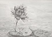 Pamela  Meredith - Waterlilly Monotone