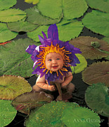 Color Purple Prints - Waterlily Print by Anne Geddes