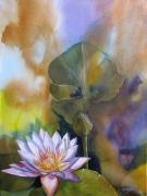 Lotus And Waterlily Paintings - Waterlily with abstraction by Alfred Ng