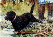 Chocolate Labrador Retreiver Prints - Waters Edge Print by Molly Poole