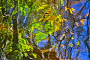 Timelapse Prints - Watery Autumn Reflection Print by Robert Harmon
