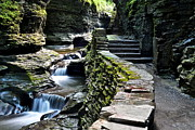 Stone Steps Posters - Watkins Glen Exiting the Trail Poster by Robert Harmon