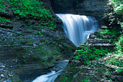Finger Lakes Photo Originals - Watkins Glen in Spring by Steve Clough