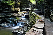 Stone Steps Framed Prints - Watkins Glen State Park Framed Print by Robert Harmon