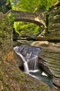Watkins Glen Posters - Watkins Glen Waterfalls Poster by Anthony Sacco
