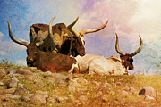 Long Horn Digital Art Posters - Watusi Cattle Poster by James Metcalf