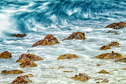Galapagos Metal Prints - Wave Metal Print by Todd Bielby