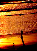 Surf Silhouette Prints - WAVES of GOLD Print by Karen Wiles