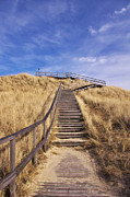 Wooden Stairs Framed Prints - Way to Dune Framed Print by Angela Doelling AD DESIGN Photo and PhotoArt