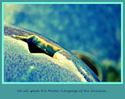The Language Posters - We All Speak the Master Language of The Universe Poster by Susanne Van Hulst