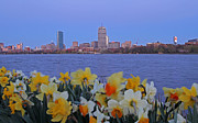 Spring Scenery Art - We are Boston by Juergen Roth