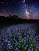 Aaron J Groen - We Are Just Visitors...