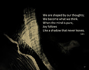 Gerlinde Keating - Keating Associates Inc - WE ARE SHAPED BY OUR THOUGHTS