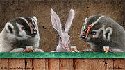 Rabbits Prints - We Dont Need No Stinking Badgers... Print by Will Bullas