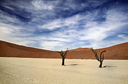 Namib Naukluft National Park Framed Prints - We stood side by side Framed Print by A Rey