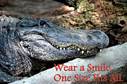 Universal Language Prints - Wear A Smile/Smiling Alligator Print by Kathy  White