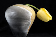 Floral Ceramics Prints - Weary Tulip Print by Monty Cook