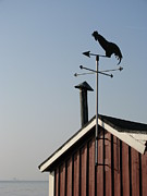 Weathervane Prints - Weathercock Malmo Europe Print by Eva Csilla Horvath