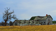 Weathered Barns Print by Alys Caviness-Gober