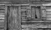 Old House Photographs Prints - Weathered Door and Window 1 Print by Denise Mazzocco