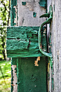 Painted Wood Prints - Weathered Green Paint Print by Paul Ward