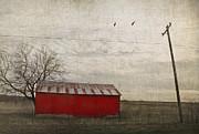 Elena Nosyreva - Weathered red barn