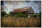 Farmyard Digital Art Posters - Weathered Poster by Vickie Emms