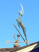 Weathervane Prints - Weathervane - Deer Print by Wayne Sheeler