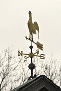 Weathervane Prints - Weathervane - Rooster Print by Wayne Sheeler
