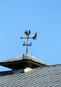 Weathervane Prints - Weathervane Print by Nicki Bennett
