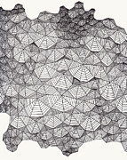 Pen And Ink Drawing Art - Web Wall by Clint Fulkerson