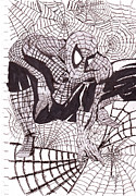 Spiderman Drawings - Webbed Spiderman by Patrick Mayne