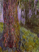 Weeping Willow Posters - Weeping Willow and the Waterlily Pond Poster by Claude Monet
