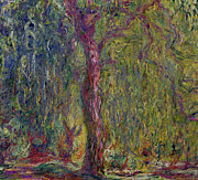 Impasto Painting Posters - Weeping Willow Poster by Claude Monet