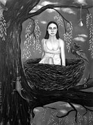 Pear Tree Painting Posters - Weeping Willow in BW Poster by Leah Saulnier The Painting Maniac