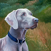 Dog Head Posters - Weimaraner Dog Poster by Alice Leggett